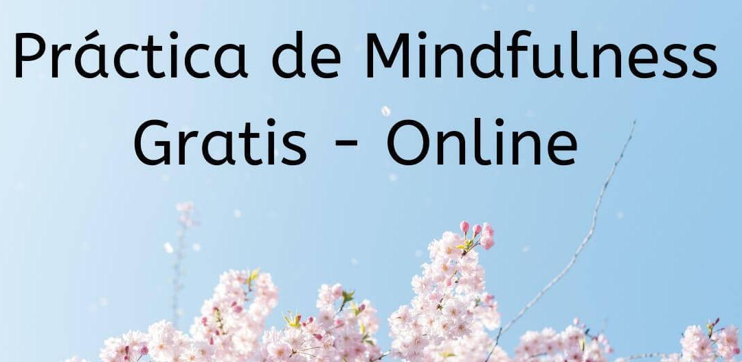 Practicamos mindfulness online